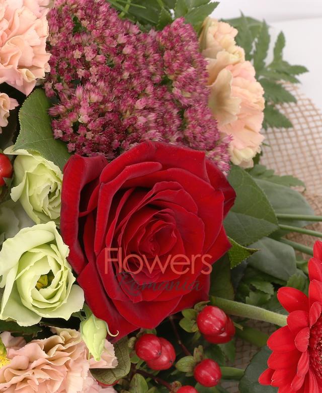 3 trandafiri rosii, 3 gerbera roșie, 3 lisianthus alb, 3 garoafe banan, 2 hypricum roșu, 2 solidago, 1 kalanchoe, asparagus, salal, philodendron, corylus