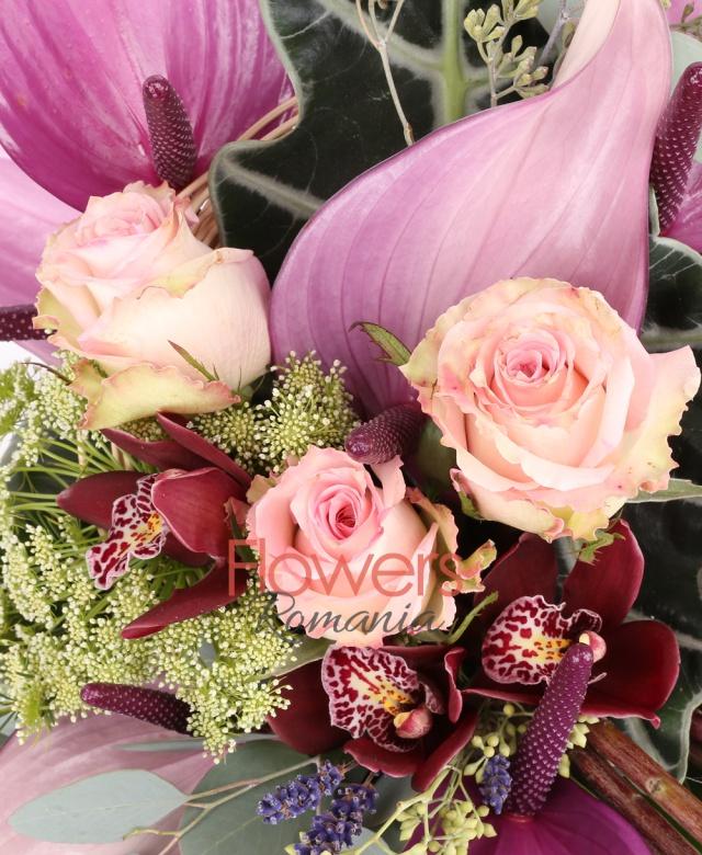 4 trandafiri roz, 7 anthurium mov, 2 trachelium alb, 1 cymbidium grena, lavanda, waxflower, eucalypt, monstera, aspidistra, curly