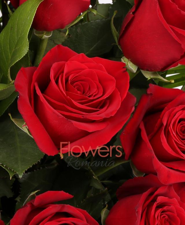 coș florentin, 39 trandafiri, robelini