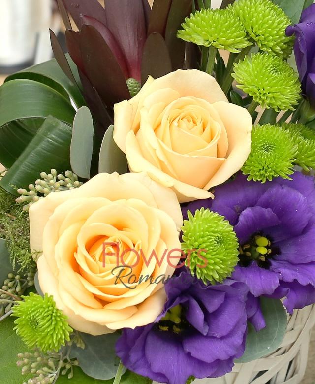 coș răchita ,2 trandafiri banan, 2 leucadendron, 3 lisianthus mov, 2 santini verde, eucalypt, mușchi