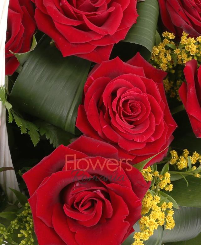coș, 23 trandafiri rosii, solidago, aspidistra