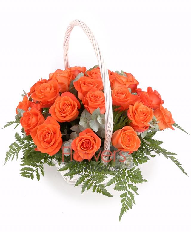 23 orange roses basket, greenery