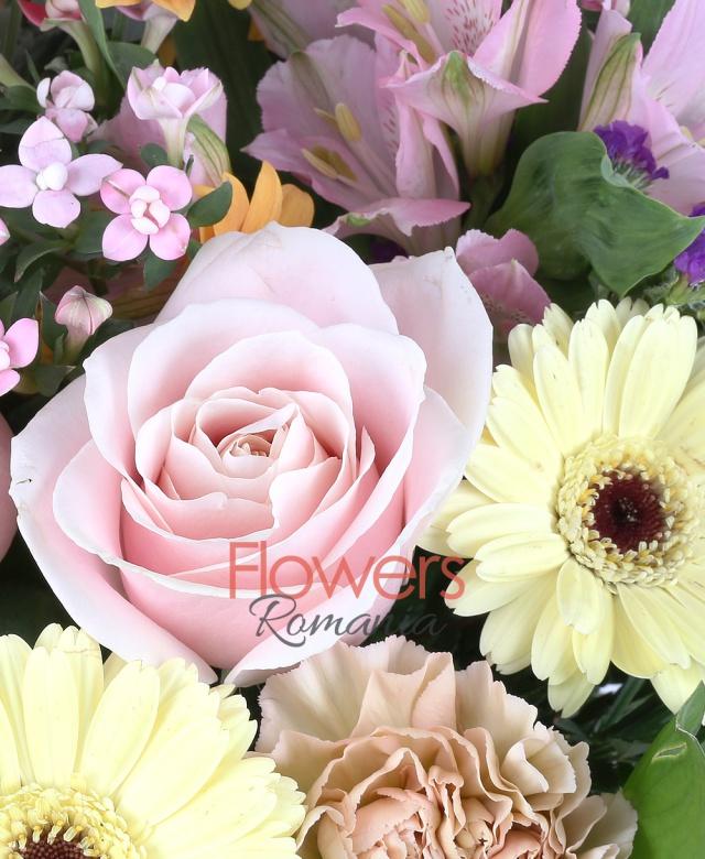 3 garoafe cappuccino, 5 gerbera crem, 3 trandafiri roz pal, 3 miniroze portocalii, 1 crizantemă portocalie, 5 lisianthus alb, 3 bovardia roz, limonium, ruscus, olanda, 3 alstroemeria roz, eucalypt
