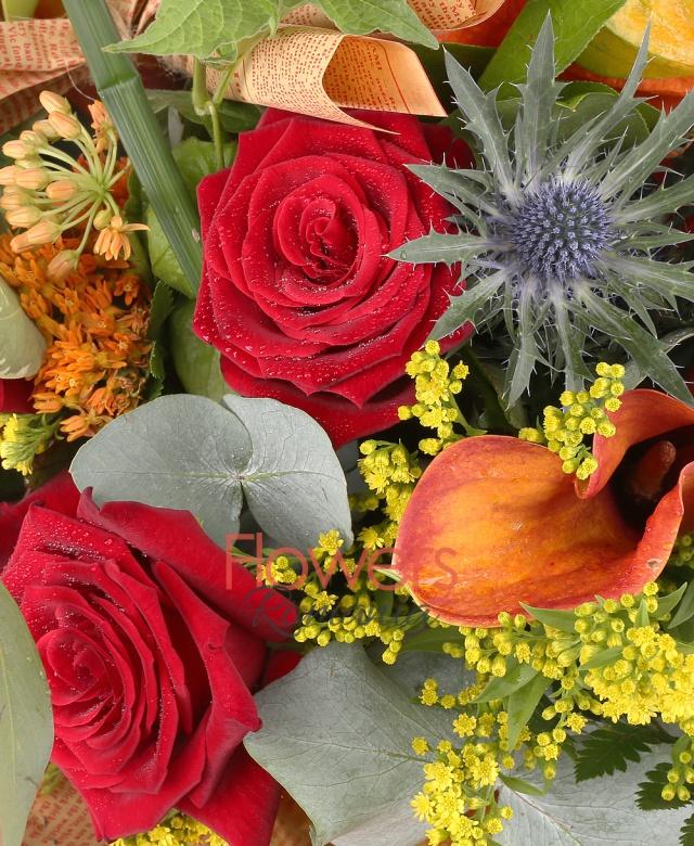 3 trandafiri rosii, 5 cale mango, 3 trandafiri portocalii, 3 asclepias portocaliu, 2 eringium, 2 pisalis, 3 cupe cymbidium verde, solidago, cornete hartie