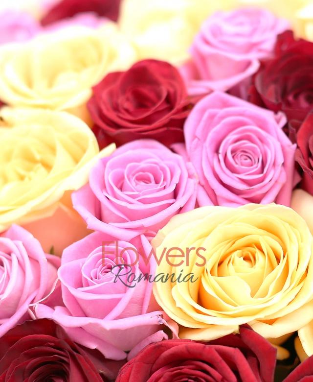 35 trandafiri rosii, 33 trandafiri roz, 33 trandafiri banan